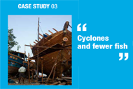 Cyclones and Fewer Fish